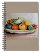 Healthy Plate Spiral Notebook