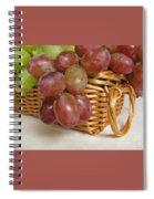 Healthy Snack Spiral Notebook