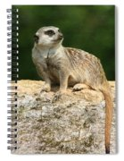 Hear No Evil See No Evil Speak No Evil Spiral Notebook