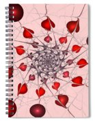 Heart Catcher Spiral Notebook