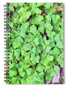 Heart Clovers Spiral Notebook
