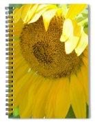 Heart Full Of Gold Spiral Notebook