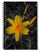 Heart Glow Spiral Notebook