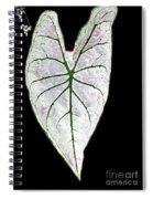 Heart In The Garden Spiral Notebook