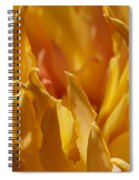 Heart Of A Peony 2 Spiral Notebook