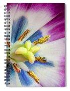Heart Of A Tulip Spiral Notebook