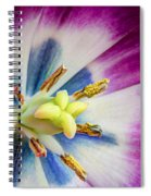 Heart Of A Tulip - Square Spiral Notebook