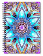 Heart Of Inner Sense Spiral Notebook