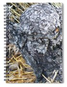 Heart Of Stone Spiral Notebook