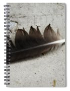 Heart Rock And Feather Spiral Notebook