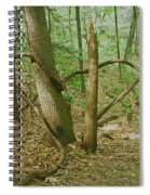 Heart Shaped Roots Spiral Notebook