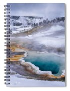 Heart Spring Spiral Notebook