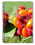 Hearts-a-bursting Seed Pods Spiral Notebook