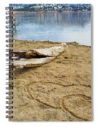 Hearts Drifting Spiral Notebook