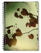 Hearts Spiral Notebook