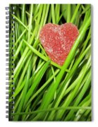 Hearty Spiral Notebook