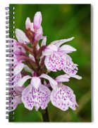 Heath Spotted Orchid Spiral Notebook