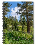Heaven In The High Country Spiral Notebook