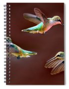 Heavenly Birds Spiral Notebook