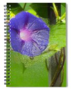 Heavenly Blue Spiral Notebook