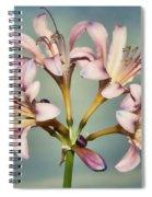 Heavenly Lilies Spiral Notebook