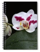 Heavenly Tranquility Spiral Notebook