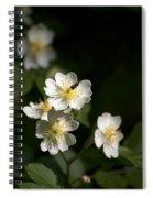 Heaven's Scent Spiral Notebook