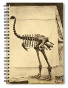 Heavy Footed Moa Skeleton Spiral Notebook