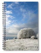 Heavy Frost Spiral Notebook