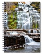 Hector Falls Spiral Notebook