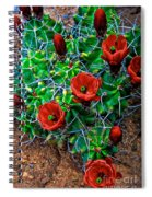 Hedgehog In Bloom Spiral Notebook