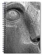 Heinz Warneke's Mountain Lion Spiral Notebook
