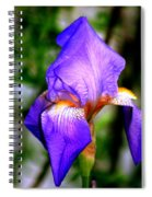 Heirloom Iris Purple Spiral Notebook