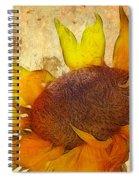 Helianthus Spiral Notebook