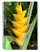 Heliconia Caribea Spiral Notebook
