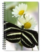 Heliconius Charithonia Spiral Notebook
