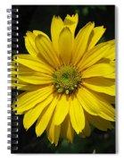 Heliopsis Summer Sun Spiral Notebook