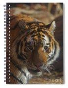 Hello 2 Spiral Notebook