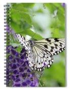 Hello Beauty Spiral Notebook