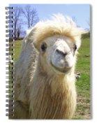 Hello Spiral Notebook
