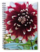 Hello Dahlia Spiral Notebook