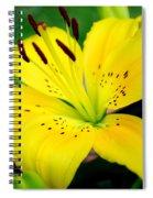 Hello Freckles Spiral Notebook