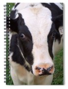 Hello My Name Is Cow Spiral Notebook