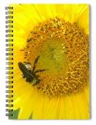 Hello Sunflower Spiral Notebook