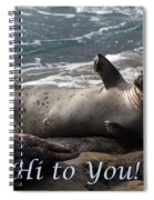 Hello To You Sea Lion Spiral Notebook
