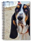 Henry The Basset Spiral Notebook
