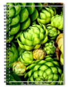 Hens And Chick Plants Spiral Notebook