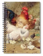 Hens Roosting With Their Chickens Spiral Notebook