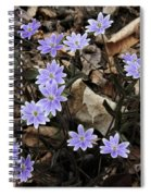 Hepatica Spiral Notebook