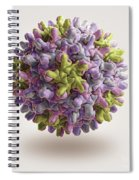 Hepatitis B Virus Spiral Notebook